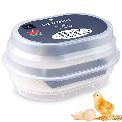 Egg Incubator, HBlife 9-12 Digital Fully Automatic Incubator for Chicken Eggs