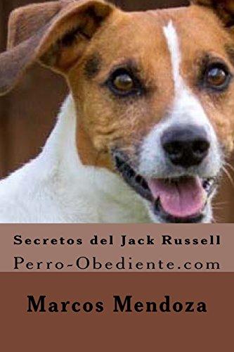 Secretos del Jack Russell: Perro-Obediente.com