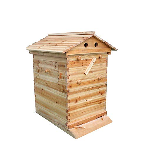 Cedarwood Wooden House Wood Box Super Brood Beekeeping Beehive