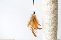 Petpals-Hand-Made-Paper-Rope-Cat-Tree-Condo-with-Scratching-Post-Perch-and-Interactive-Feather-Toy-Natural