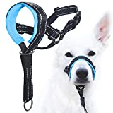 GoodBoy Dog Head Halter with Safety Strap - Stops Heavy Pulling
