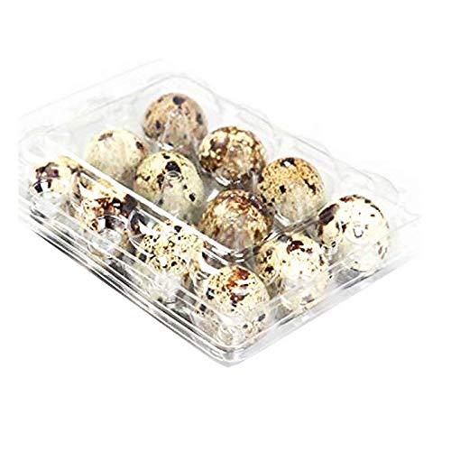 Quail Egg - Cajas de cartón para huevos de codorniz, reutil