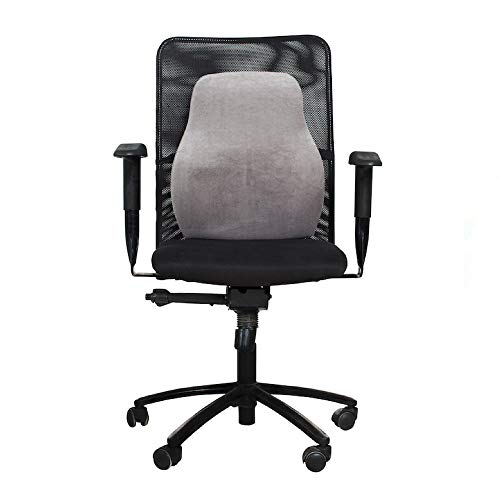 Wakefit Memory Foam Back Support Chair Cushion