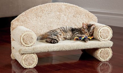 """CLASSY KITTY Cat Couch, 25"""" Assorted colors"""