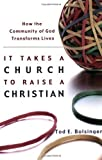 It Takes a Church to Raise a Christian by Tod E Bolsinger (1-Jan-2004) Paperback