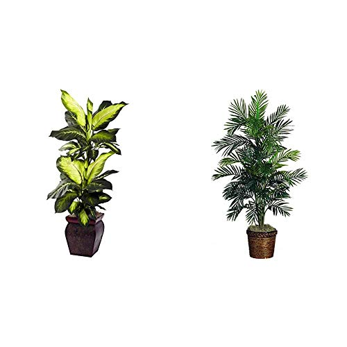 Nearly Natural Golden Dieffenbachia with Decorative Planter, Green & 5263-0308 56in. Areca Palm Silk Tree with Basket,Green,10' x 10' x 48'