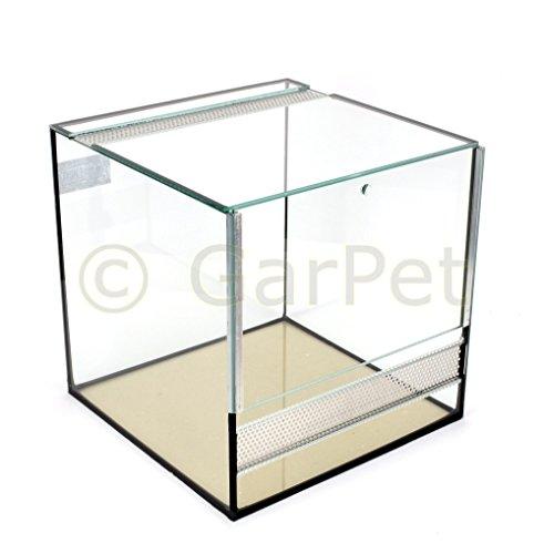 Terrarium | Glas | 30 x 30 x 30 cm
