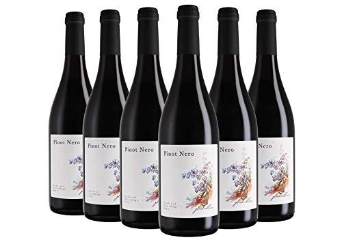 Sdtirol - Alto Adige DOC Pinot Nero Blumenfeld 2020 6 bottiglie da 0,75 L