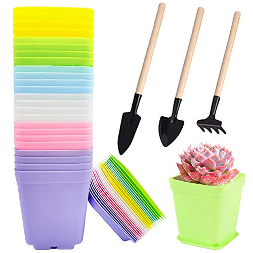 24 Pack 3 Inch Plastic Plant Pots,Seedling Nursery Pots with Saucers and 3 Mini Garden Tools,Succulent Planter Container for Garden,Room,Office,Balcony Decor,Multicolor