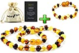 Baltic Amber Necklace + Amber Bracelet (Unisex) - Natural Amber from Baltic Region (13inch. and 5.5inch.)