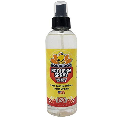Bodhi Dog Not Here! Spray | Trains Your Pet Where...