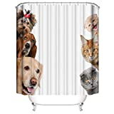 A&S Creavention Funny Cats & Dogs Shower Curtain 70' x 70' Standard Size, 1pc (Cats & Dogs)