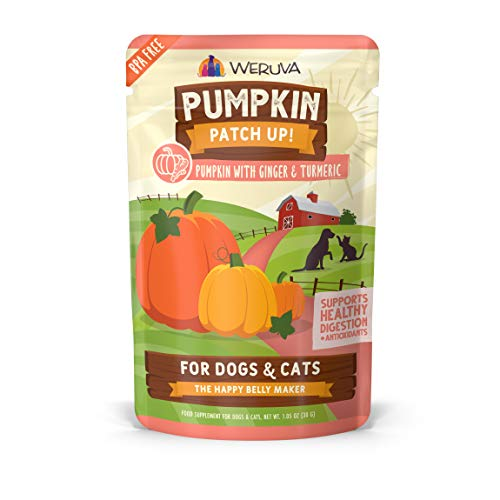 Weruva Pumpkin Patch Up!, Pumpkin with Ginger & Turmeric for Dogs & Cats, 1.05oz Pouch (Pack of 12)