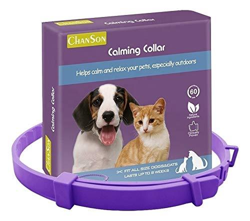BodyOpia Collar ajustable para perros medianos y grandes. Ayuda a los...