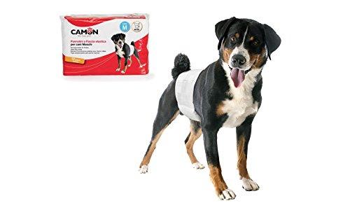 Camon Pannolini usa e getta a fascia elastica per cani maschi Taglia M Diametro 46/60 cm 12 pezzi