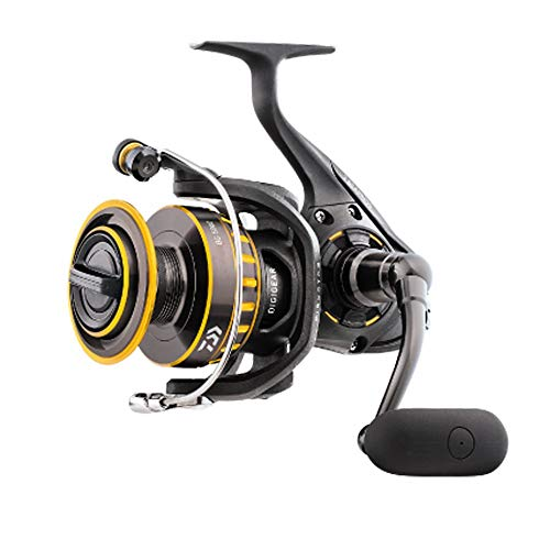Daiwa BG4000 BG Saltwater Spinning Reel, 4000, 5.7: 1 Gear Ratio, 6+1 Bearings, 39.90' Retrieve...