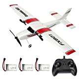 RC Plane 2.4GHz 2CH Remote Control Airplane Ready to Fly, Gliding Aircraft Model Easy to Fly for...