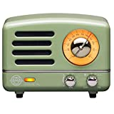 Muzen Portable Wireless High Definition Audio FM Radio & Bluetooth Speaker, Metal Mint Green, Travel Case Included - Classic Vintage Retro Design
