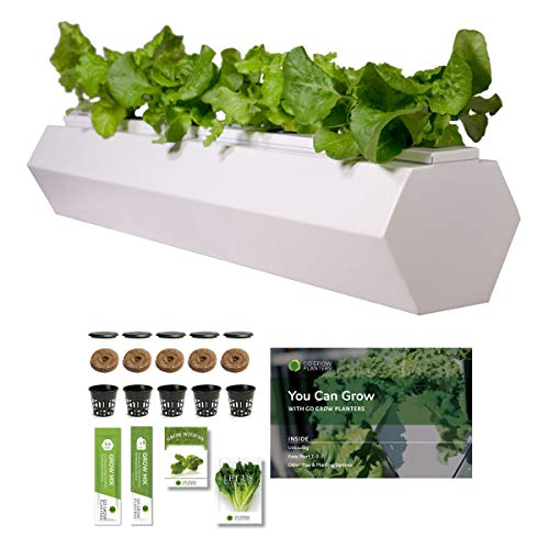 Go Grow Hydroponic Planter System - Indoor/Outdoor Gardening for Non-GMO Veggies, Leafy Greens, Selective Herbs and Flowers w/Grow Kit (Hex - 5.5 Gallons, Cool White)