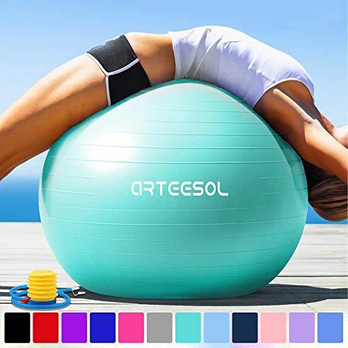 arteesol Gymnastikball 45cm / 55cm / 65cm / 75 cm inkl. Pumpe Anti-Burst Sitzball für Yoga Pilates Fitness Physiotherapie (5 Farben)