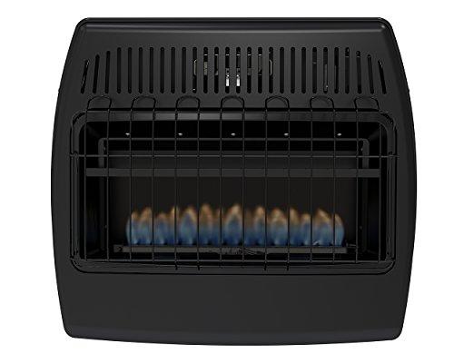 Dyna-Glo GBF30DTDG-2 30,000 BTU Blue Flame Vent Free Garage...