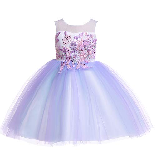 Weileenice 2-14T Flower Girls Toddler Halloween Cosplay Dress Lace Pastel Tulle 3D Embroidery Beading Princess Fancy Christmas Pageant Wedding Party Dresses (5-6 Years, 2811-LP) Lilac Purple