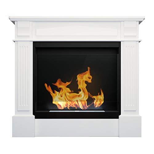 B2C Bio Ethanol Fireplace Biofire Fire Professional Portal Unit BLACK WITH GLASS Werona