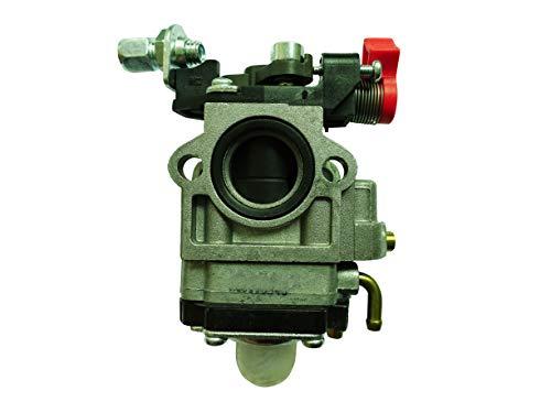 DCSparess, carburatore per decespugliatore EFCO 753-755-453 CG430 CG520, sostituisce il carburatore Walbro