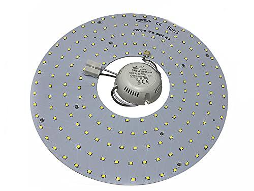 Vetrineinrete Circolina led 2835 modulo neon circolare 54 watt 265 volt ricambio neon per plafoniere luce calda fredda naturale (Luce bianca fredda 6500k) E38
