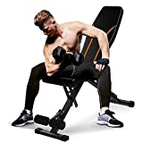 Adjustable Weight Bench Workout Bench for Full Body Workout,Foldable Strength Training Fitness Bench Multi-Purpose,Portable Flat/Incline/Decline Exercise Bench for Home Gym