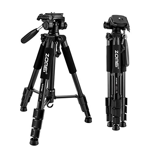 ZOMEI Compact Light Weight Travel Portable Aluminum Camera Tripod for Canon Nikon Sony DSLR Camera with Carry Case(Black)