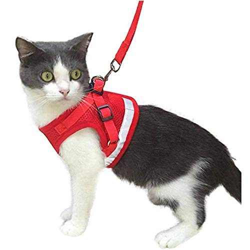 Kamots Beauty Escape Proof Cat Harness and Leash for Walking Red