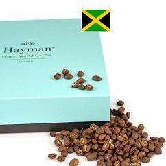 Hayman 100% Blue Mountain Kaffee aus Jamaika