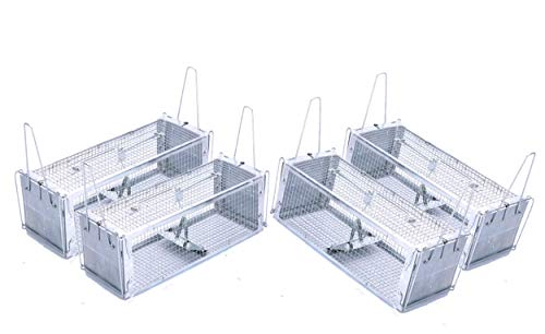 AB Traps Pro-Quality Live Animal Humane Trap Catch and Release Rats Mouse Mice Rodents and Similar Sized Pests - Safe and Effective - 16' x 5.5' x 4.5' Silver Extended Dual Door Trap 4-Pack