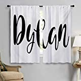 Dylan, Green Drapery, Monochrome Arrangement of Letters Stylized Font Design Hand Drawn Typography, 2 Panels, Black and White, W55 x L45 inch,