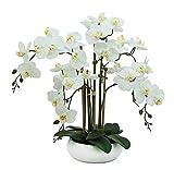 Ligne Déco | Orchidée Blanche Artificielle | 55cm | Fête des mères | Toucher...