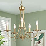 Gold Chandeliers for Dining Rooms, Gold Lighting Fixture for Living Room, 5-Light, W18.5'x H23.5'