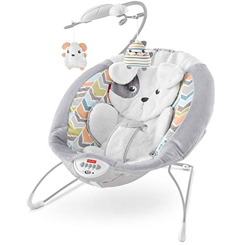 Fisher-Price Deluxe Bouncer: Sweet Dreams...