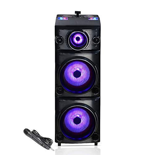 Germany's Blaupunkt PS600 Double Deejay Panel Party Speaker (Black)
