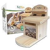 BellMietz Mangeoire pour écureuils - Extra sûre et stable -...