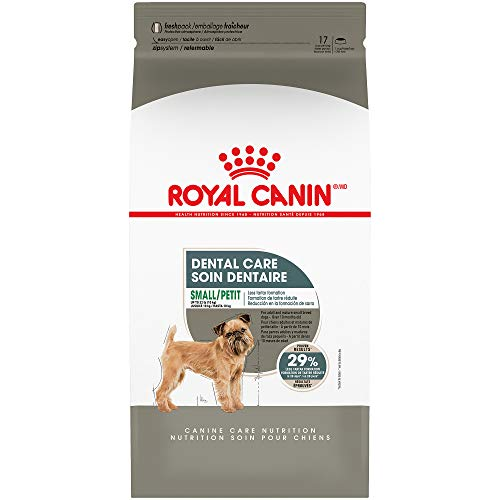 Royal Canin Dental Care Dry Food for Small Dogs,...