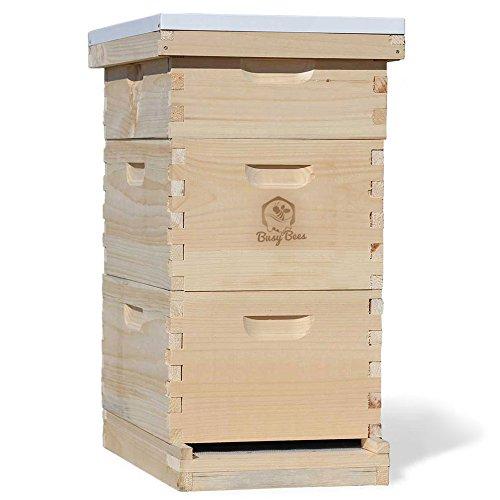 Busy Bee's -n- More Complete Langstroth Beehive