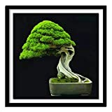 5D Diy Diamante Pintura punto de cruz rbol de hoja perenne Bonsai Diamante Diamante completo Bordado Rhinestone Kit de decoracin de regalo