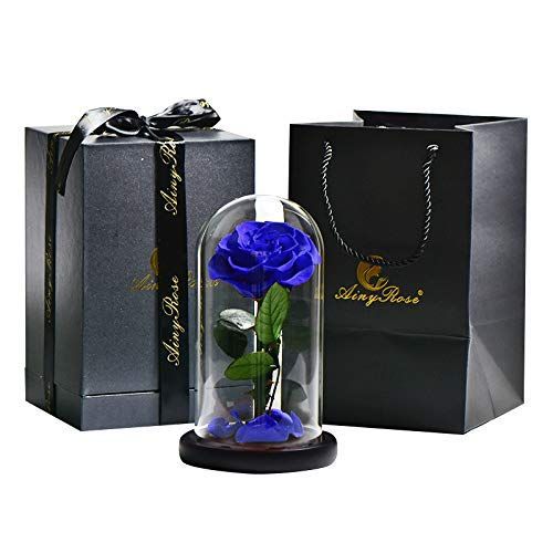 SW Glass Rose -Preserved Real Rose in Glass Dome Gift Eternal Flower,Beautiful Creative Gift for Valentine's Day Mother's Day Christmas Anniversary Birthday Thanksgiving (Blue)