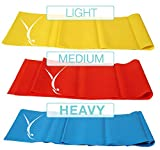 3 Piece Booty Resistance Bands Set for Home Workout and Exercise, 4' Long :: 100 Percent Latex for Toning, Stretching, Strength Training and Physical Therapy :: for Men, Women, Kids and Seniors