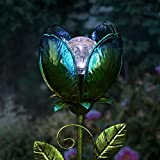 Exhart Solar Glass...image