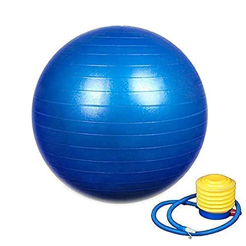 Weltime Exercise Heavy Duty Gym Ball Non-Slip Stability Ball Anti Burst Yoga Ball Balance Ball Extra Thick Fitness Ball for Home, Gym, Office with Quick Pump (Gym Ball 75cm with Pump)(Multicolor)-Microfibre