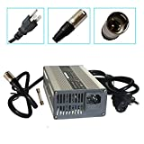 24V 5A Battery Charger with...