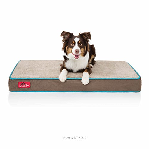 Brindle Waterproof Designer Memory Foam Pet...