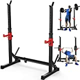 Annzoe Adjustable Multi-Function Barbell Rack Stand, Max Load 600lbs Adjustable Squat Rack Dipping Station Dip Stand Fitness Barbell Free Bench Press Stands Press Equipment Home & Gym